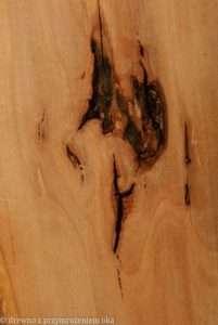 p2 201x300 - Drewno ijego zastosowanie
