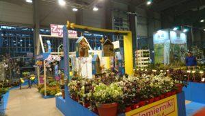 DSC 0356 300x169 - Gardenia 2020 - podsumowanie targów