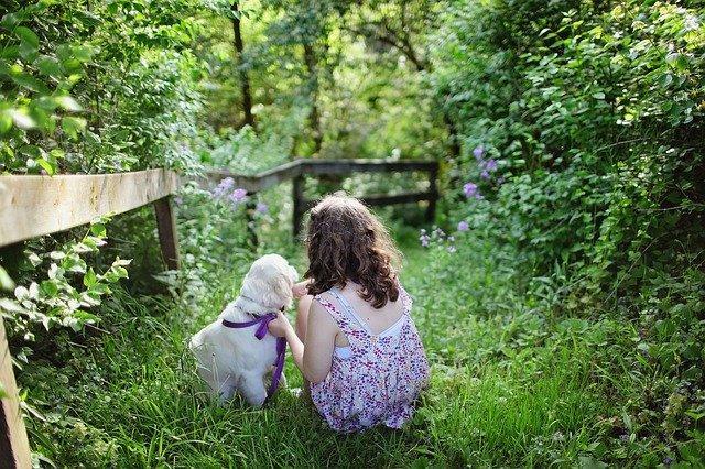 child 1867463 640 - Dziecko i zwierzę w ogrodzie